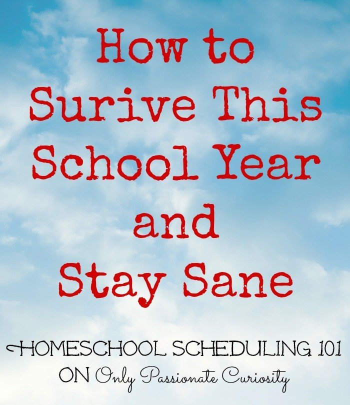 How to Survive the School Year