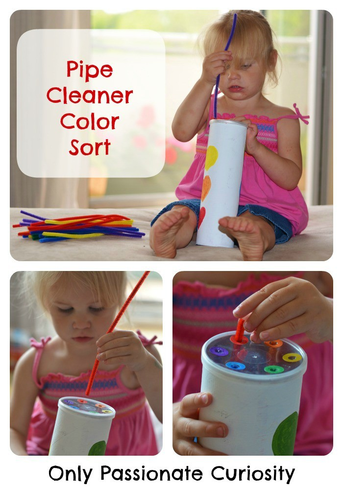 Pipe Cleaner Color Sort for Toddlers on the Love Books Exchange