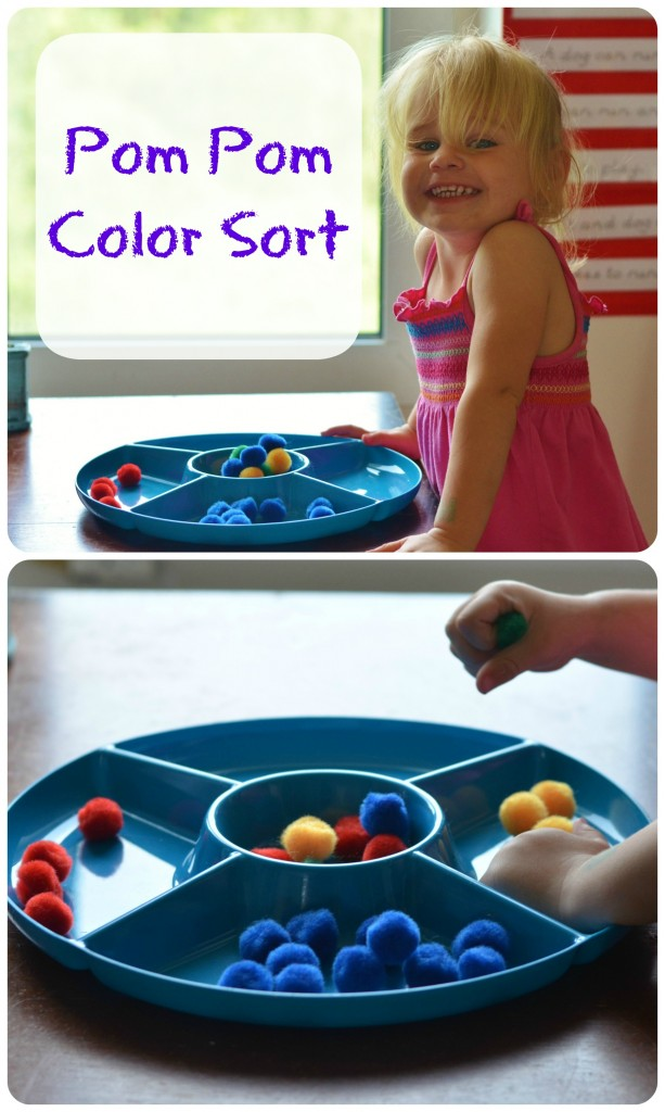 Preschool Pom Pom Color Sort