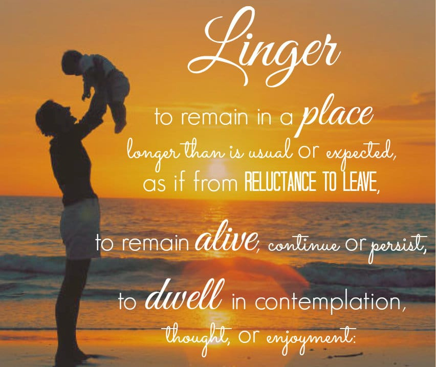 linger word of the year 2014