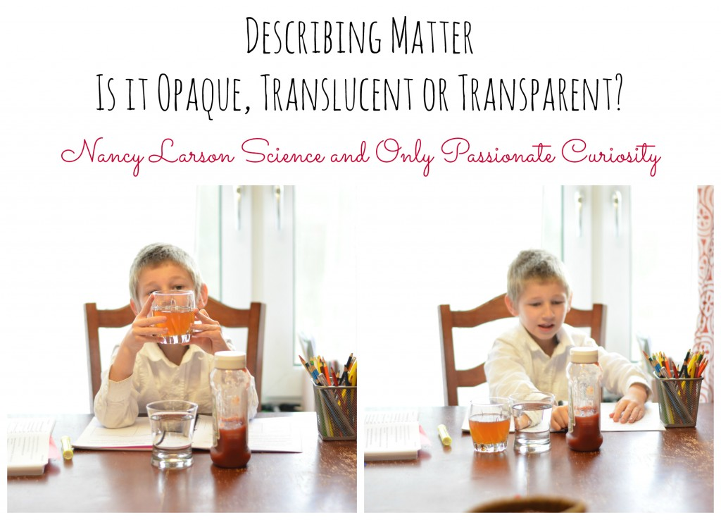 Describing Matter with Nancy Larson Science