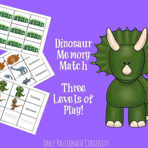 Dino Memory Match