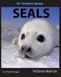 My Favorite Animal: Seals book cover