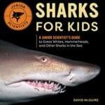 Sharks for Kids book
