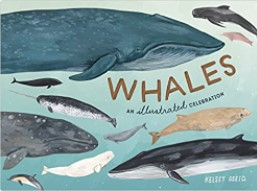 Whales An Illustrated Celebration book cover