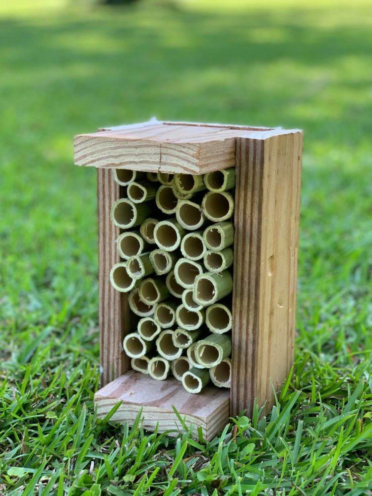 finished ladybug house photo