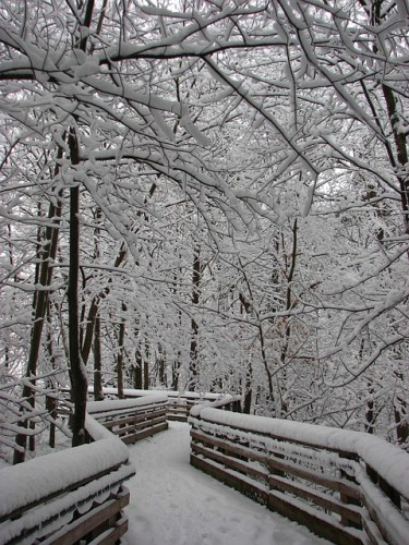 snow-1022667_640 (1)