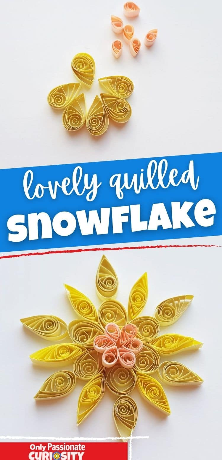 These lovely quilled snowflakes are as intricate as the real thing. However, they are made with paper instead of snow--so you can keep them as long as you like! This craft is fun and doable for all ages!