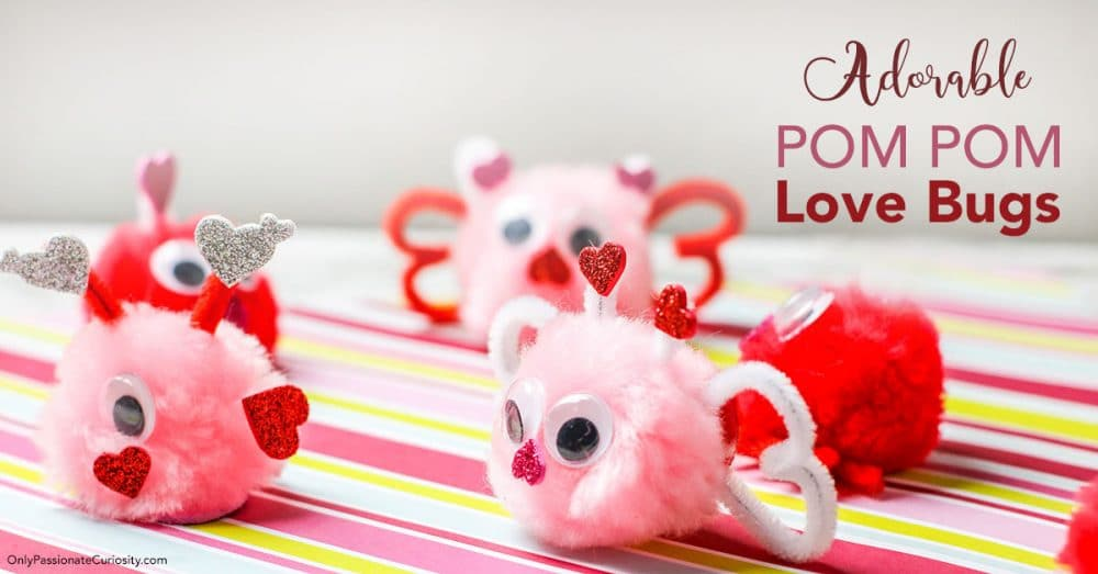 cute love bug pom poms