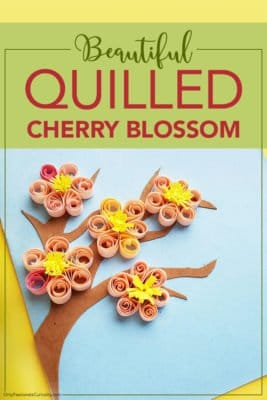 quilled cherry blossom craft