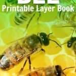 This life cycle of a bee layer book is a fun way for children to record what they're learning about the life cycle of a bee. Article includes information to extend your study to other insects!