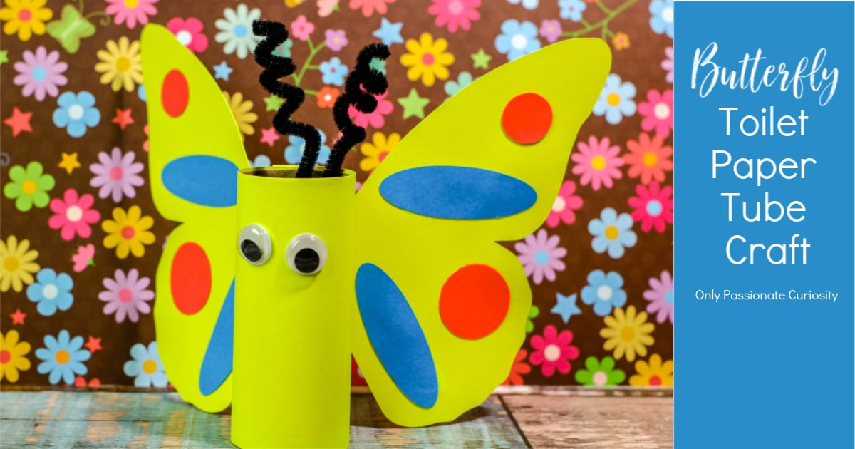 finished butterfly toilet paper tube craft