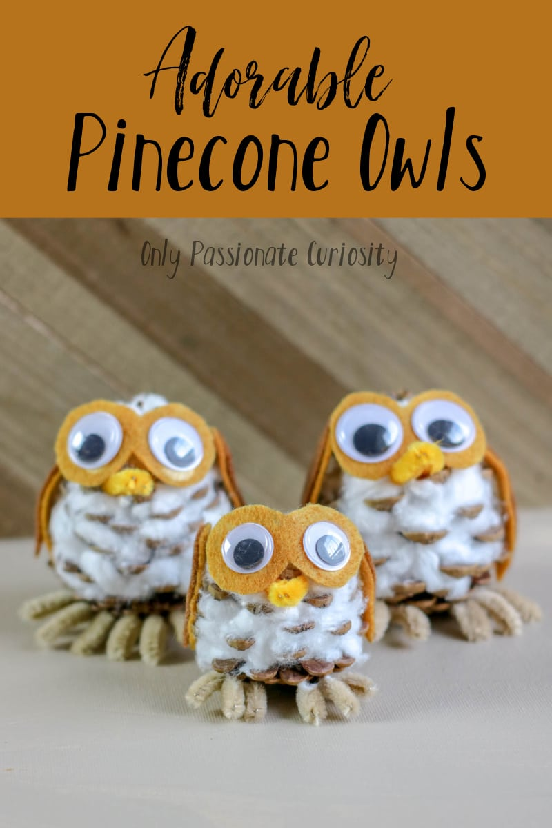 finished pinecone owls