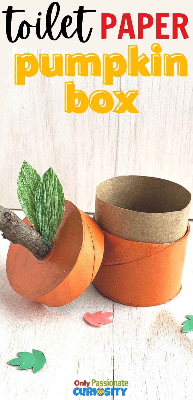 This toilet paper tube pumpkin box is a great way to recycle and make cute fall decorations. Enjoy them as decorations from fall through Thanksgiving! They're easy enough for kids to help make, and you can create them as part of a fall-themed or pumpkin-themed unit study.