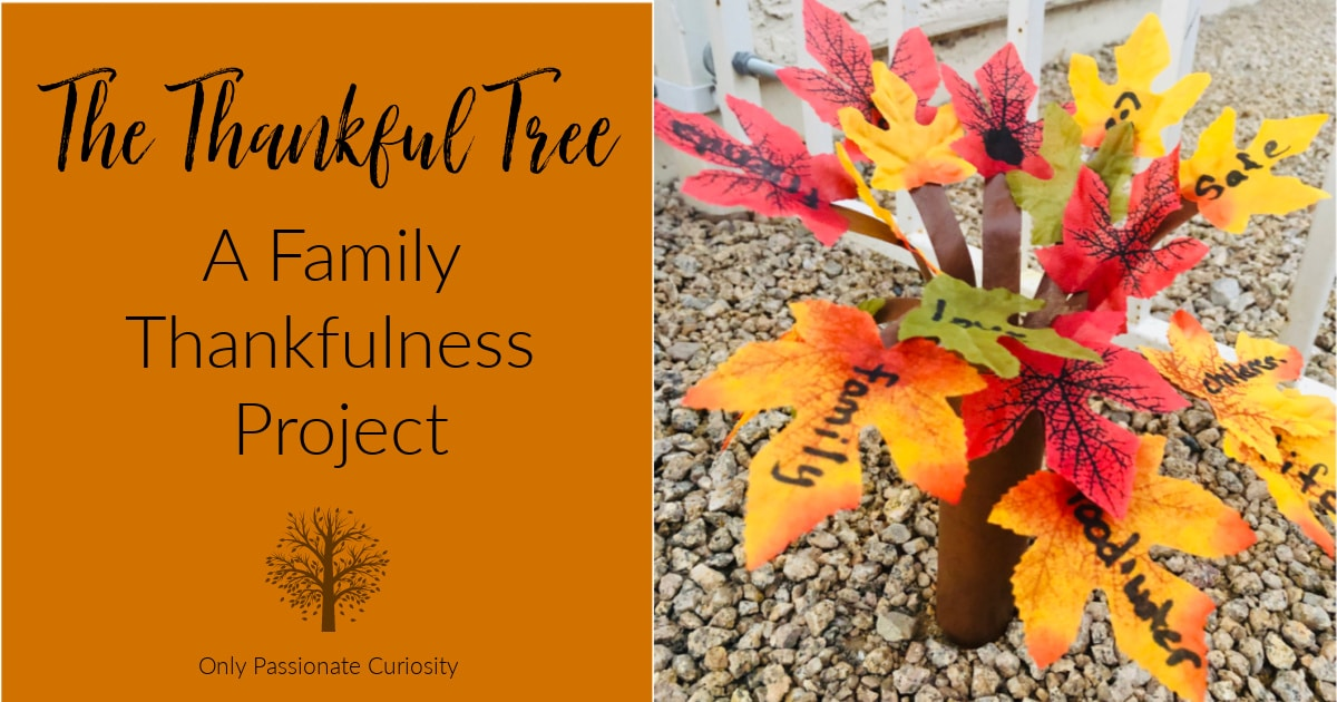 family thankfulness project