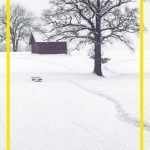 There are many STEM connections when it comes to snow! Don't give in to cabin fever! Turn winter into a fun learning experience with the science of snow!