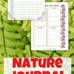 If you're planning some springtime fun outdoors with your kiddos, use this printable nature journal to help them explore and make observations!