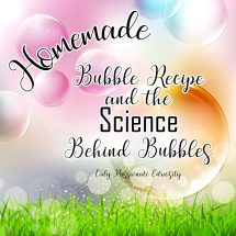 Only Passionate Curiosity Homemade Bubble Recipe