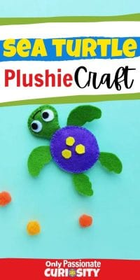 This adorable hands-on craft will be a great addition to your kids' study of sea turtles! Use it along side our other educational resources on sea turtles and marine life!