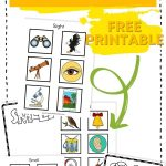 Help your young students learn all about their five senses with these fun cut and paste sorting mats! #printables #preschool #worksheets #5senses